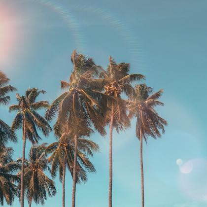 Warm & Sunny Florida Snowbird