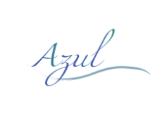 azul bar and pool service